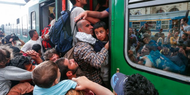 Ask the Rabbis // Refugees
