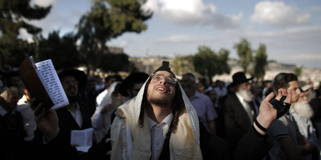 Mount Zion: Jerusalem's Wild & Sacred Backyard
