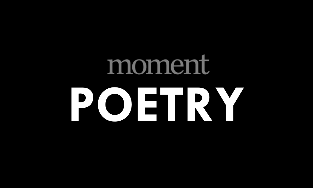 Poem | First Covid-19 Summer