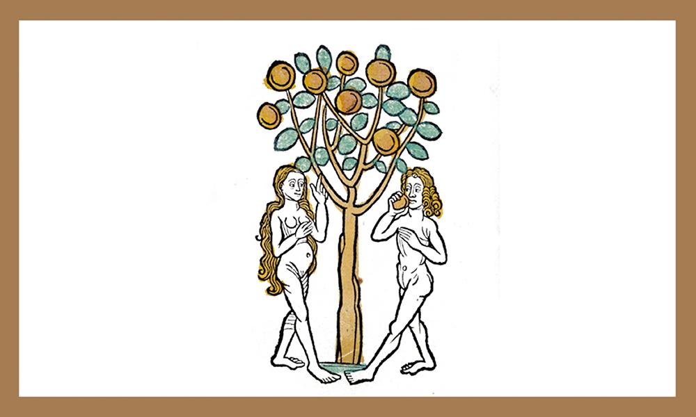 "Varda Genossar's ""Apple of Imperfection"" poem illustration."